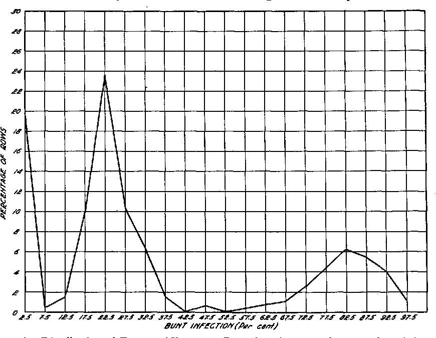 FIGURE 1.-Distribution of Fa rows of ShermanXBaart into 5 percent classes for bunt infection.