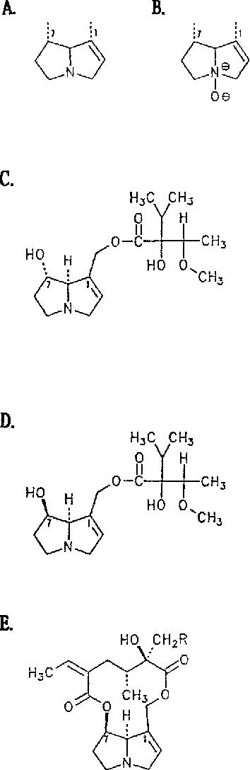 FIG. 1. Structures of pyrrolizidine alkaloids: (A) tertiary alkaloid, (B) alkaloid N-oxide, (C) 7(S)-heliotrine, (D) 7(R)-heliotfine, (E) senecionine.