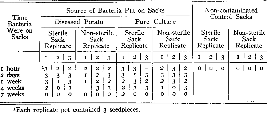 TABLE I.--Number of infected plants arising from seed pieces infected by P. scpedonica surviving on pieces of burlap sack