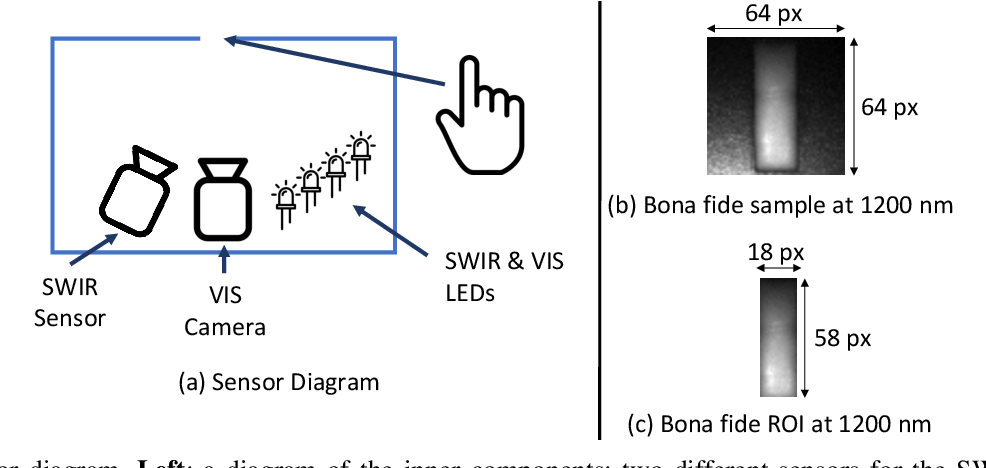 Figure 2 for Biometric Presentation Attack Detection: Beyond the Visible Spectrum