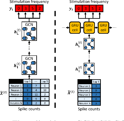 Figure 3 for Graph Convolutional Networks Reveal Neural Connections Encoding Prosthetic Sensation