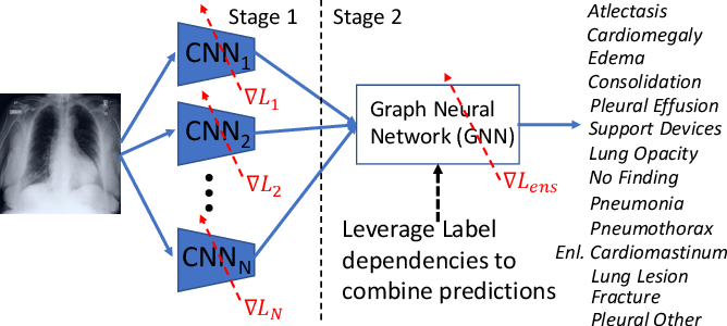 Figure 1 for Learning Decision Ensemble using a Graph Neural Network for Comorbidity Aware Chest Radiograph Screening