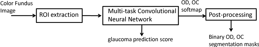 Figure 1 for A Deep Learning based Joint Segmentation and Classification Framework for Glaucoma Assesment in Retinal Color Fundus Images