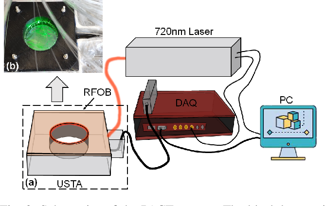 Figure 3 for Compressed Sensing for Photoacoustic Computed Tomography Using an Untrained Neural Network