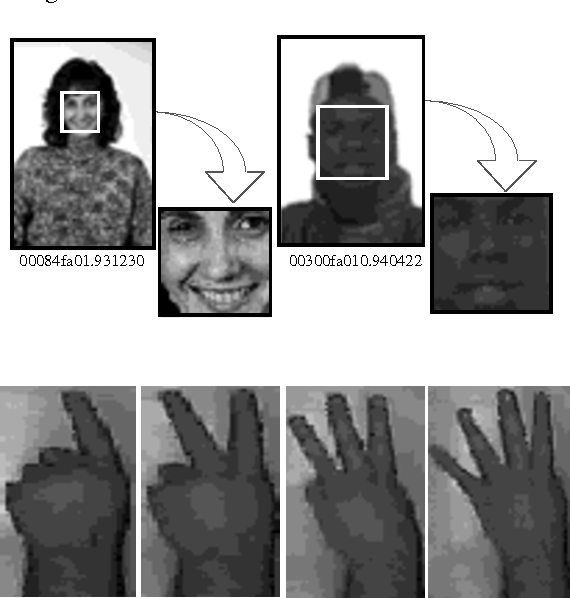 Figure 2. Examples of Normalized Face and Hand Gesture Images