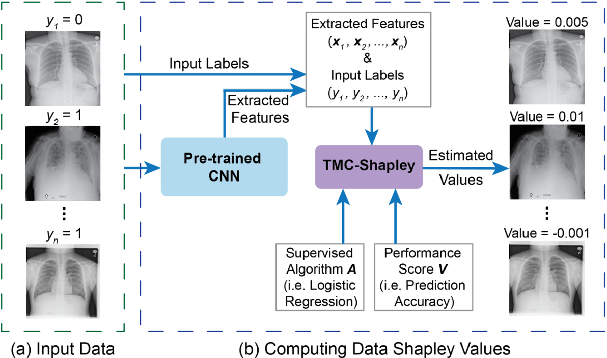 Figure 1 for Data Valuation for Medical Imaging Using Shapley Value: Application on A Large-scale Chest X-ray Dataset