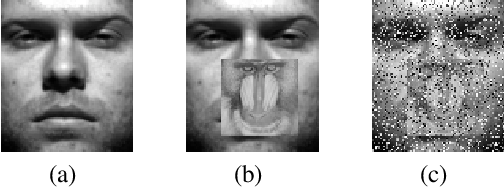 Figure 3 for A Unified Weight Learning and Low-Rank Regression Model for Robust Face Recognition