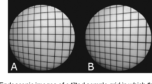 Figure 2 from Real-time geometric lens distortion correction using a