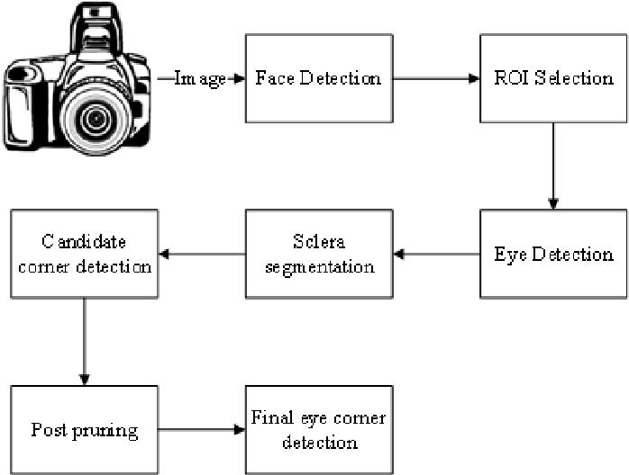 Figure 1 for An Improved Algorithm for Eye Corner Detection