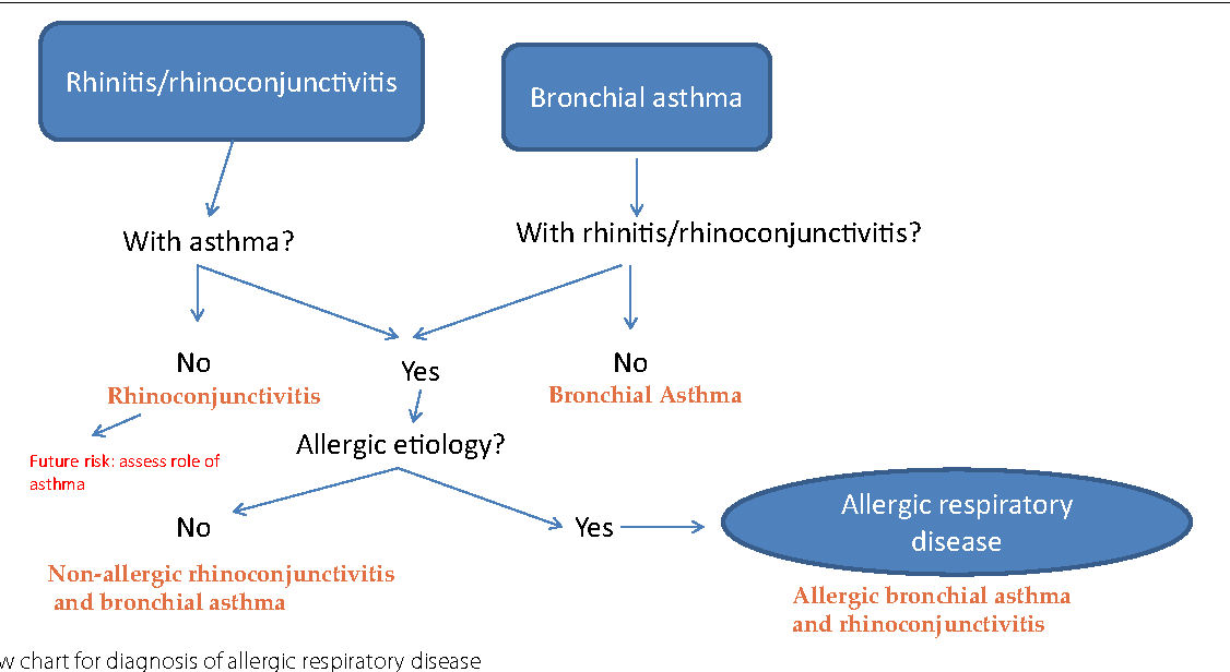 Figure 1 From Allergic Respiratory Disease Ard Setting Forth The