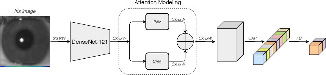 Figure 1 for Attention-Guided Network for Iris Presentation Attack Detection
