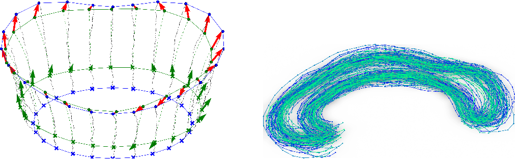 Figure 3 for A Stochastic Large Deformation Model for Computational Anatomy