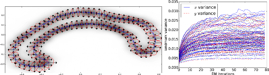 Figure 4 for A Stochastic Large Deformation Model for Computational Anatomy