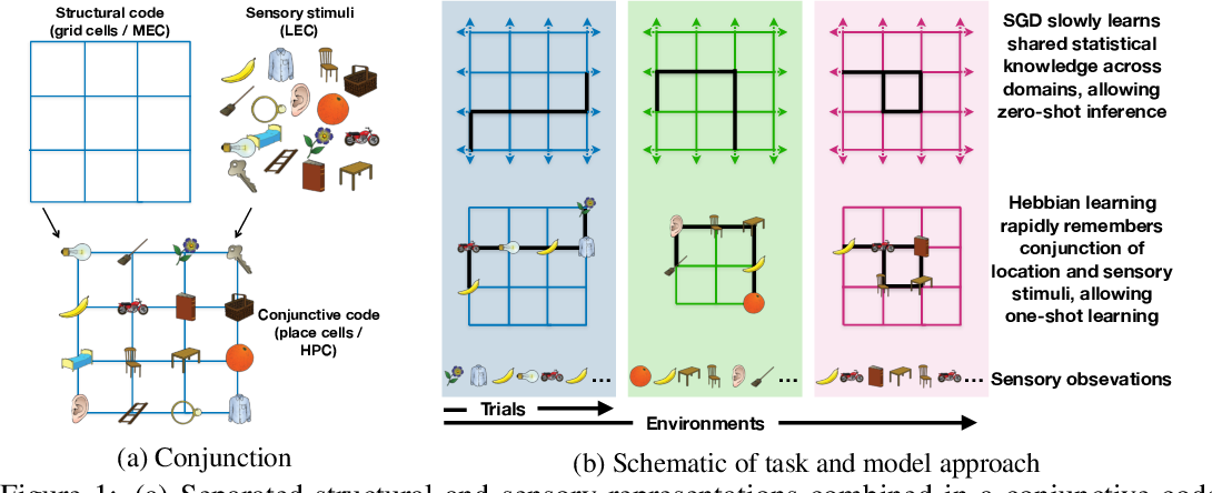 Figure 1 for Generalisation of structural knowledge in the hippocampal-entorhinal system