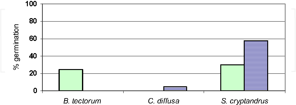 Fig. 5. Percent germination of seeds of three species (Bromus tectorum, Centaurea diffusa and Sporobolus cryptandrus) from the soil under solarization treatments at the Osoyoos Desert Centre site in 1999 (solid bars) and 2002 (hatched bars)