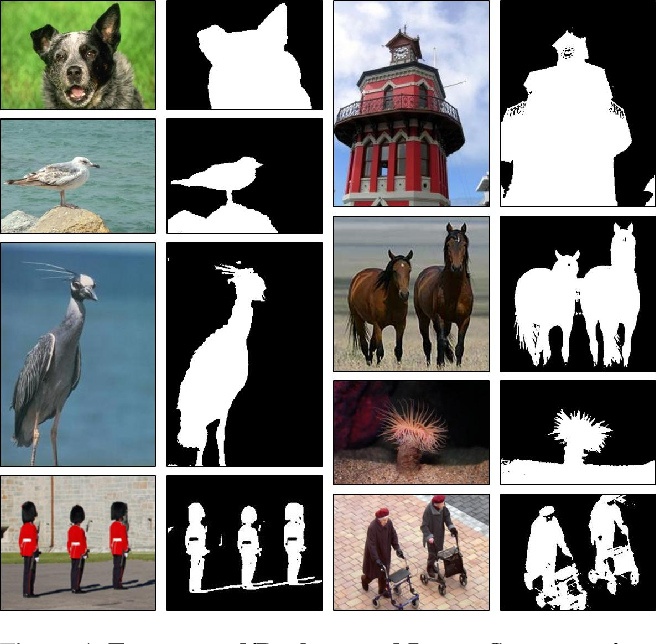 """Figure 4 for """"Double-DIP"""": Unsupervised Image Decomposition via Coupled Deep-Image-Priors"""