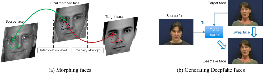 Figure 1 for Vulnerability of Face Recognition to Deep Morphing