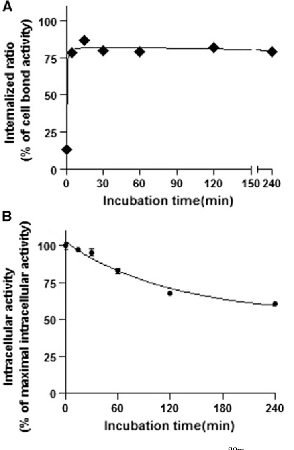 Fig. 5 Internalization (a) and efflux (b) kinetics of 99mTc-HABN2 in PC-3 cell line (n = 3, mean ± SD)