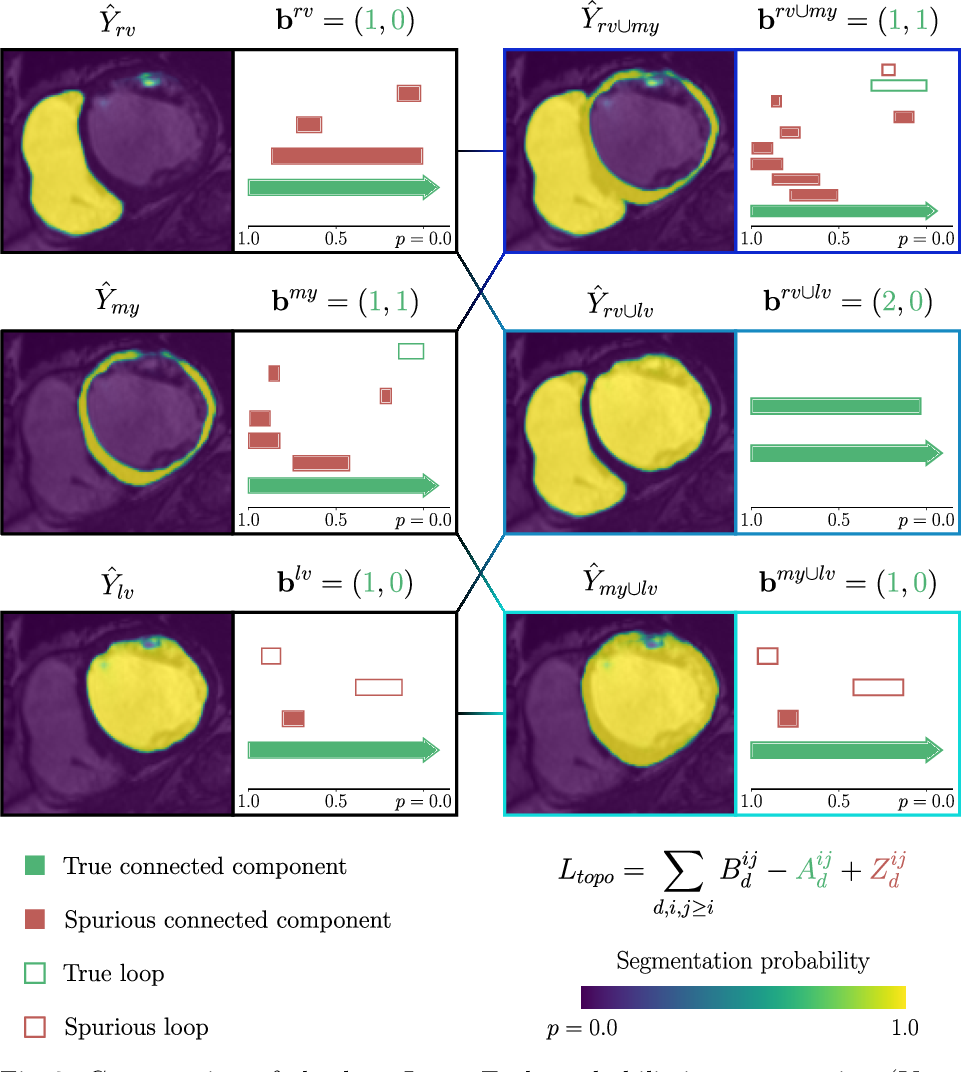 Figure 3 for A persistent homology-based topological loss function for multi-class CNN segmentation of cardiac MRI