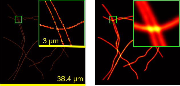Figure 1 for Deep Unrolled Recovery in Sparse Biological Imaging