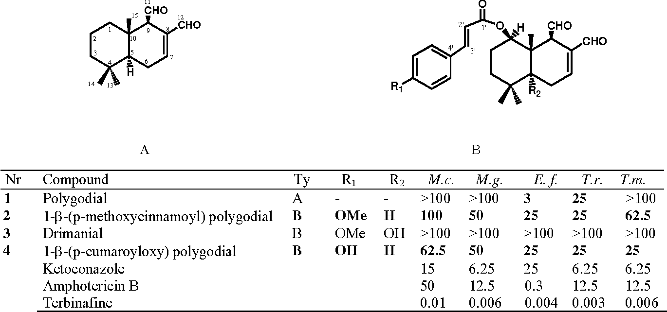 antifungal activity of fractionated extracts of Antiviral activity of salvia officinalis 423 defined as the concentration causing lethality of 10% of the cell population, ie, resulting in cell survival of 90% with no apparent changes in cell morphology.