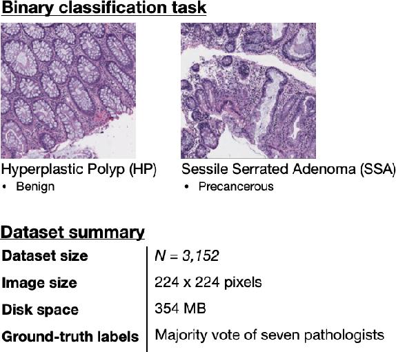 Figure 1 for A Petri Dish for Histopathology Image Analysis