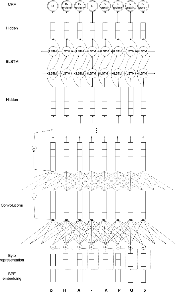 Figure 2 for A Byte-sized Approach to Named Entity Recognition
