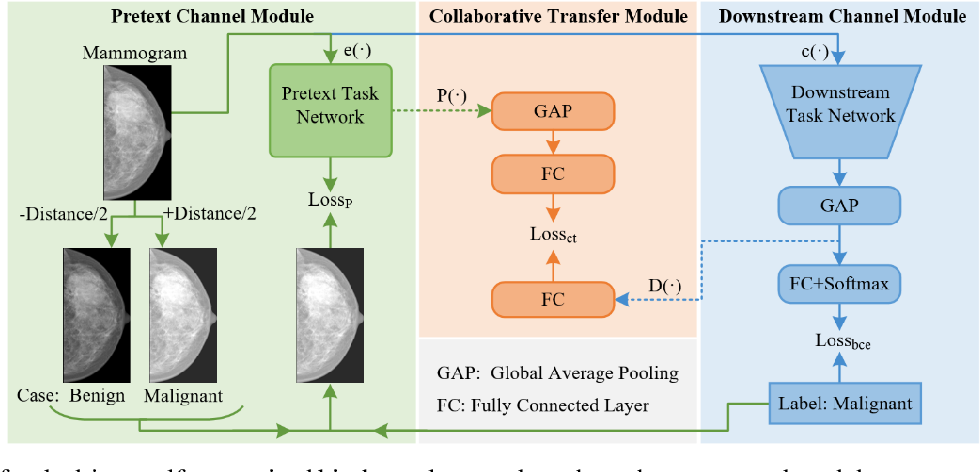 Figure 1 for Task-driven Self-supervised Bi-channel Networks Learning for Diagnosis of Breast Cancers with Mammography
