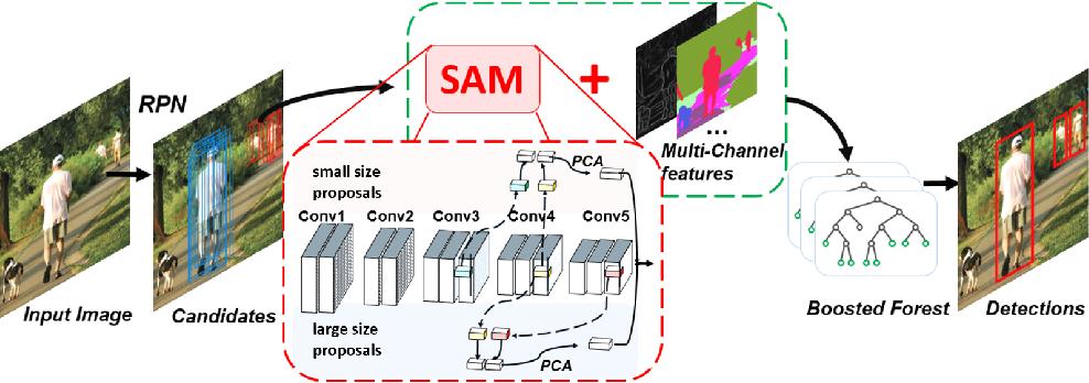Figure 1 for SAM-RCNN: Scale-Aware Multi-Resolution Multi-Channel Pedestrian Detection