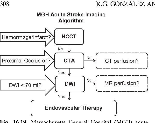 Figure 16 19 from Imaging acute ischemic stroke  - Semantic Scholar