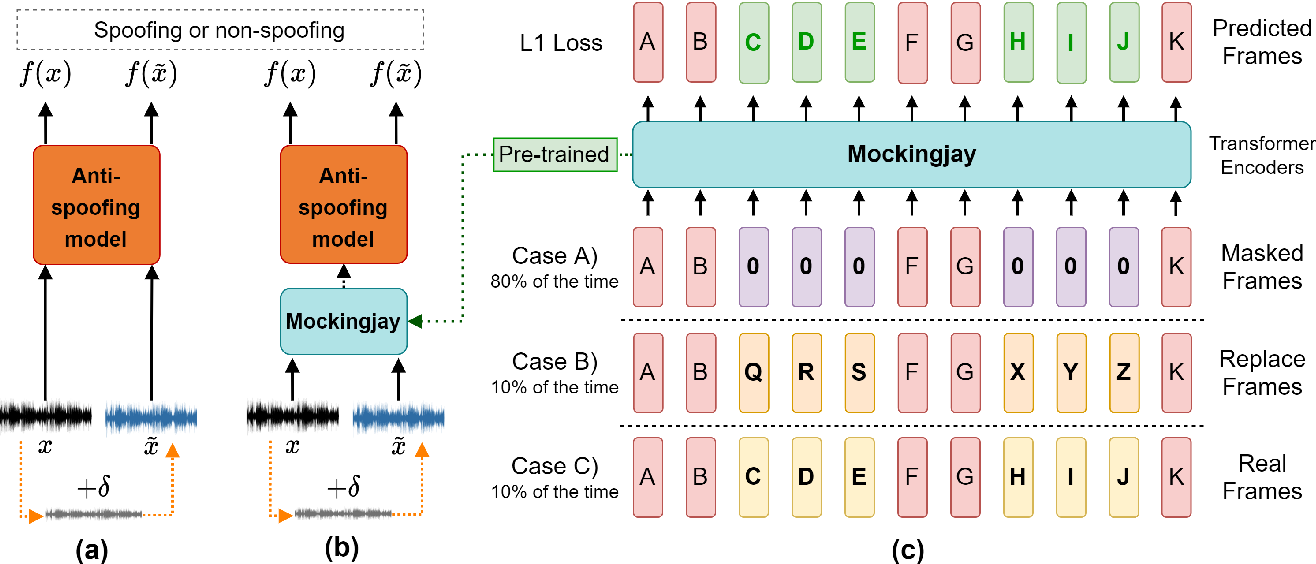 Figure 1 for Defense for Black-box Attacks on Anti-spoofing Models by Self-Supervised Learning