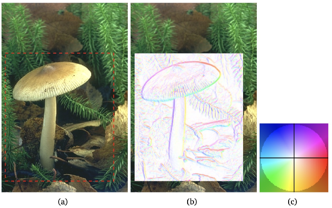 Figure 3 for From Active Contours to Minimal Geodesic Paths: New Solutions to Active Contours Problems by Eikonal Equations