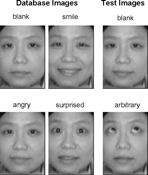 Facial features test
