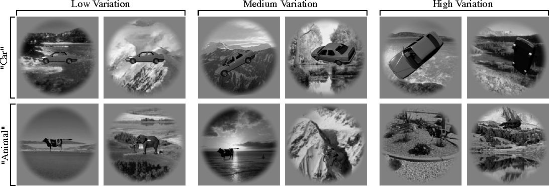 Figure 1 for The Neural Representation Benchmark and its Evaluation on Brain and Machine