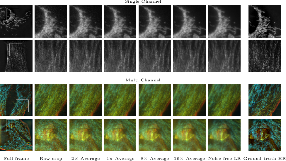 Figure 1 for W2S: A Joint Denoising and Super-Resolution Dataset