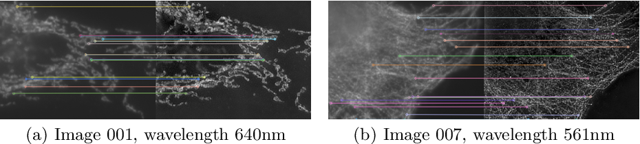 Figure 3 for W2S: A Joint Denoising and Super-Resolution Dataset