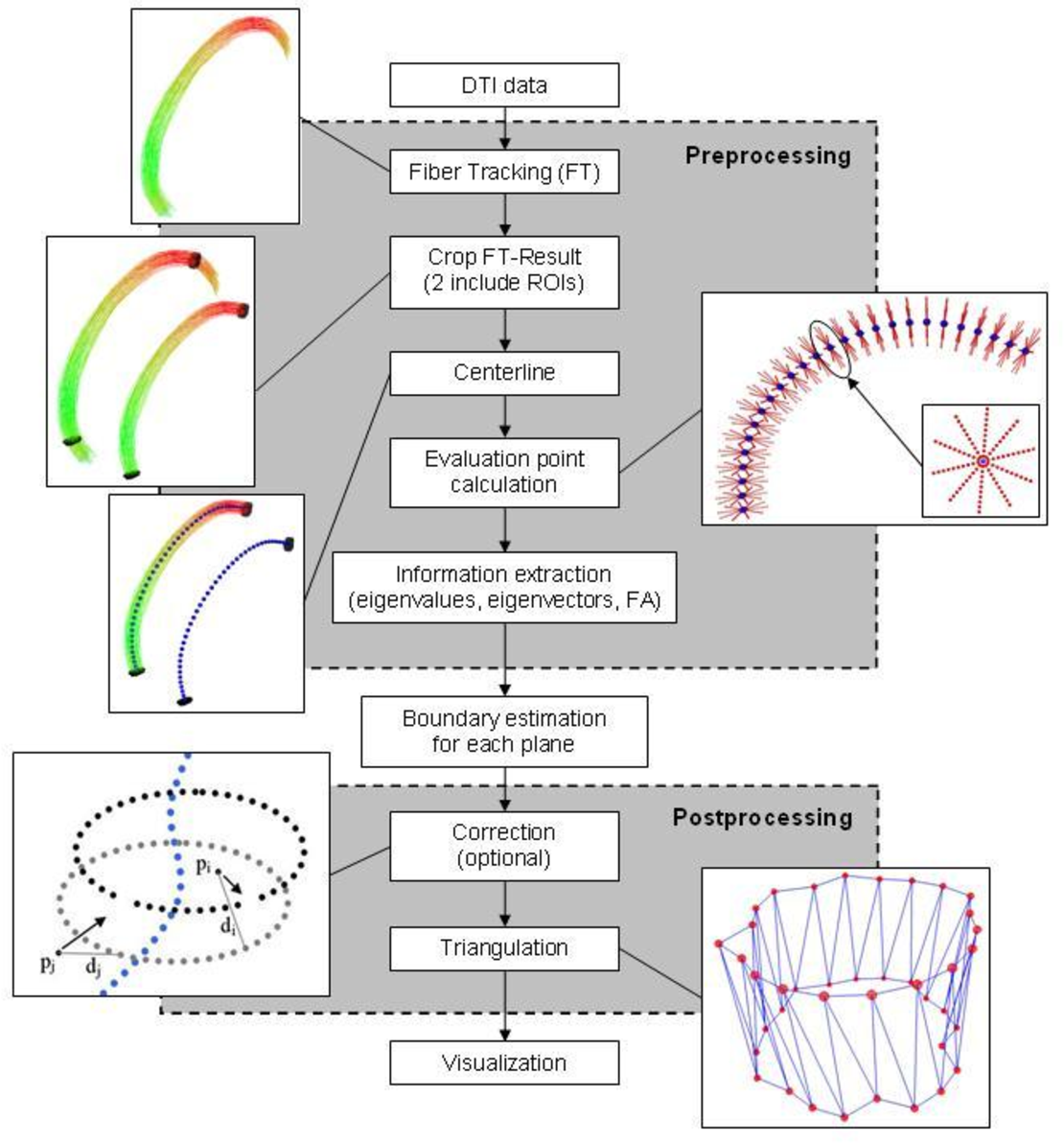 Figure 1 for A Ray-based Approach for Boundary Estimation of Fiber Bundles Derived from Diffusion Tensor Imaging
