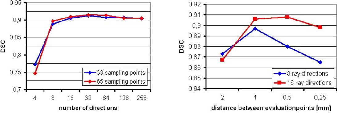Figure 2 for A Ray-based Approach for Boundary Estimation of Fiber Bundles Derived from Diffusion Tensor Imaging