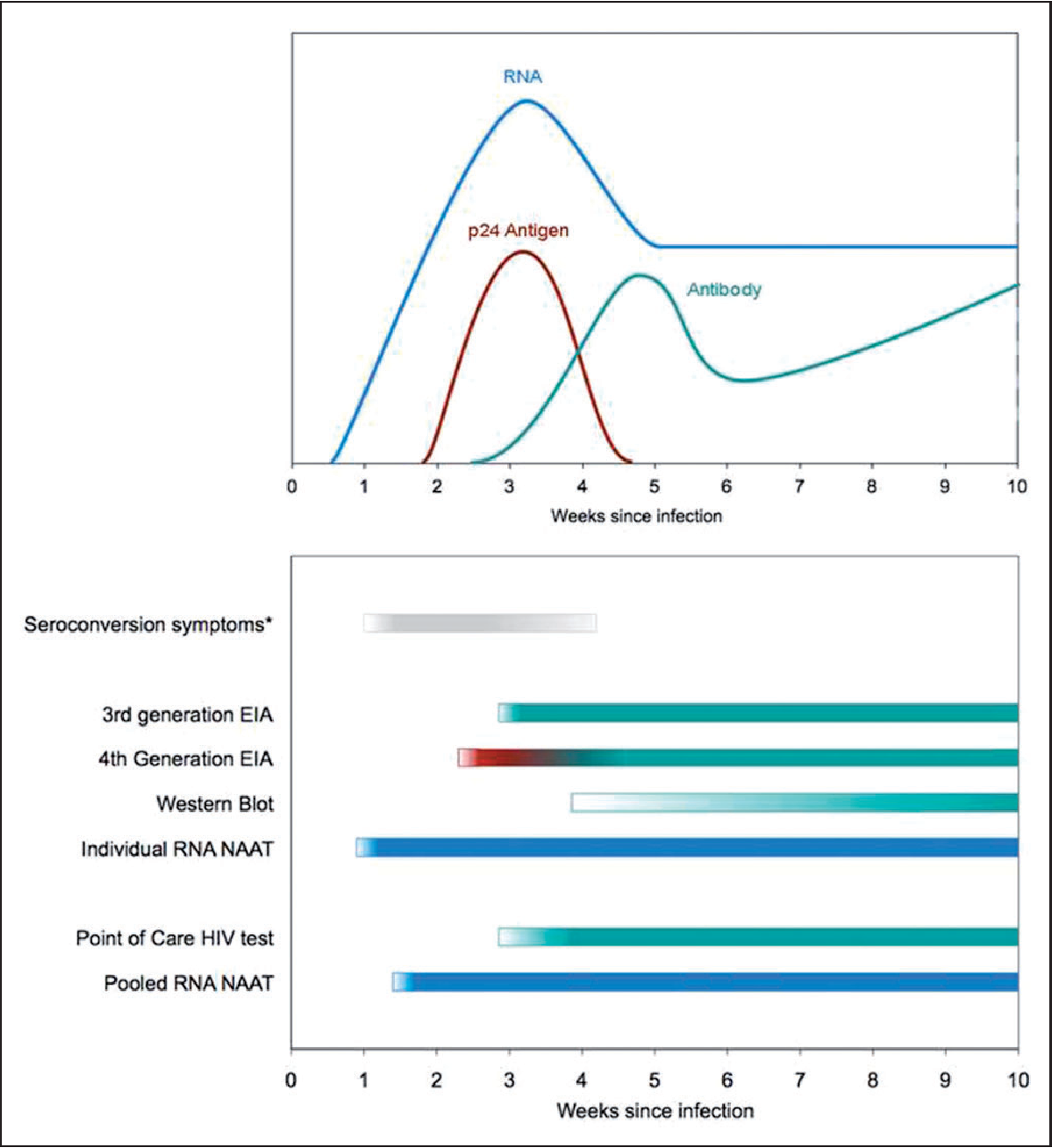 Probability of a false-negative HIV antibody test result during the