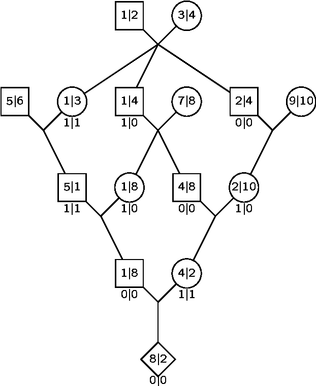 Figure 1 From Mcmc In The Analysis Of Genetic Data On Pedigrees