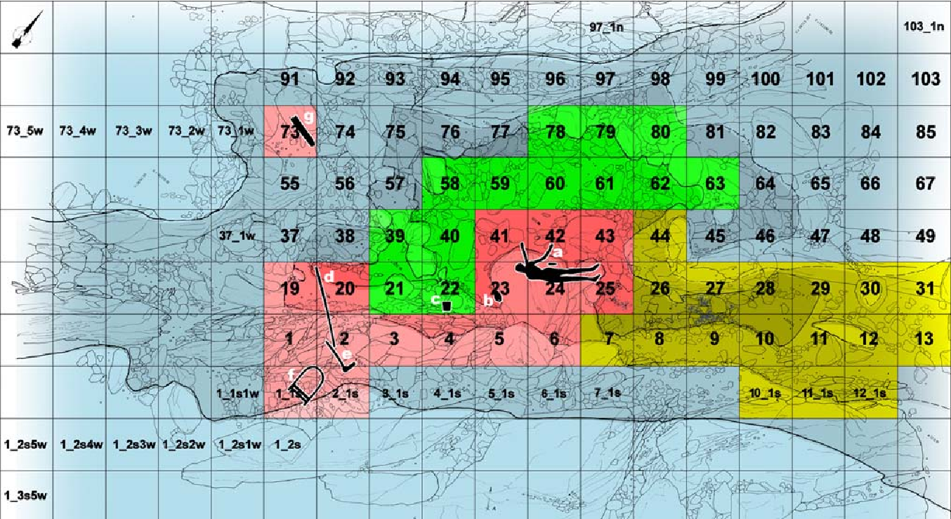 Fig. 2 The Iceman site with the 1 m2 grid. Additional quadrant numbers in the west and east (indicated with ''s'', ''w'' or ''n'') were added as supplements to the original plan. Marginal areas are not displayed. Darker shades of blue indicate deeper areas of the rocky hollow. Red area excavated during the 1991 campaign. Yellow