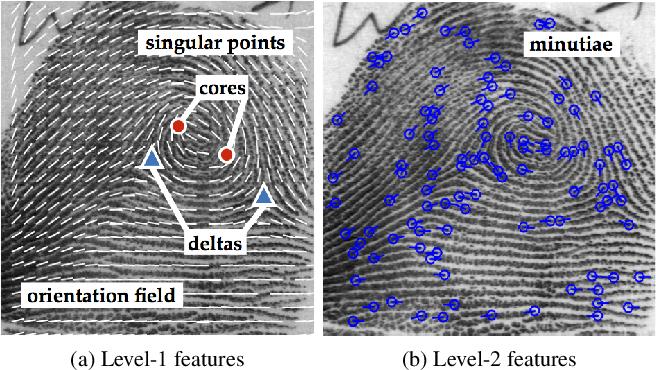 Figure 1 for Fingerprints: Fixed Length Representation via Deep Networks and Domain Knowledge