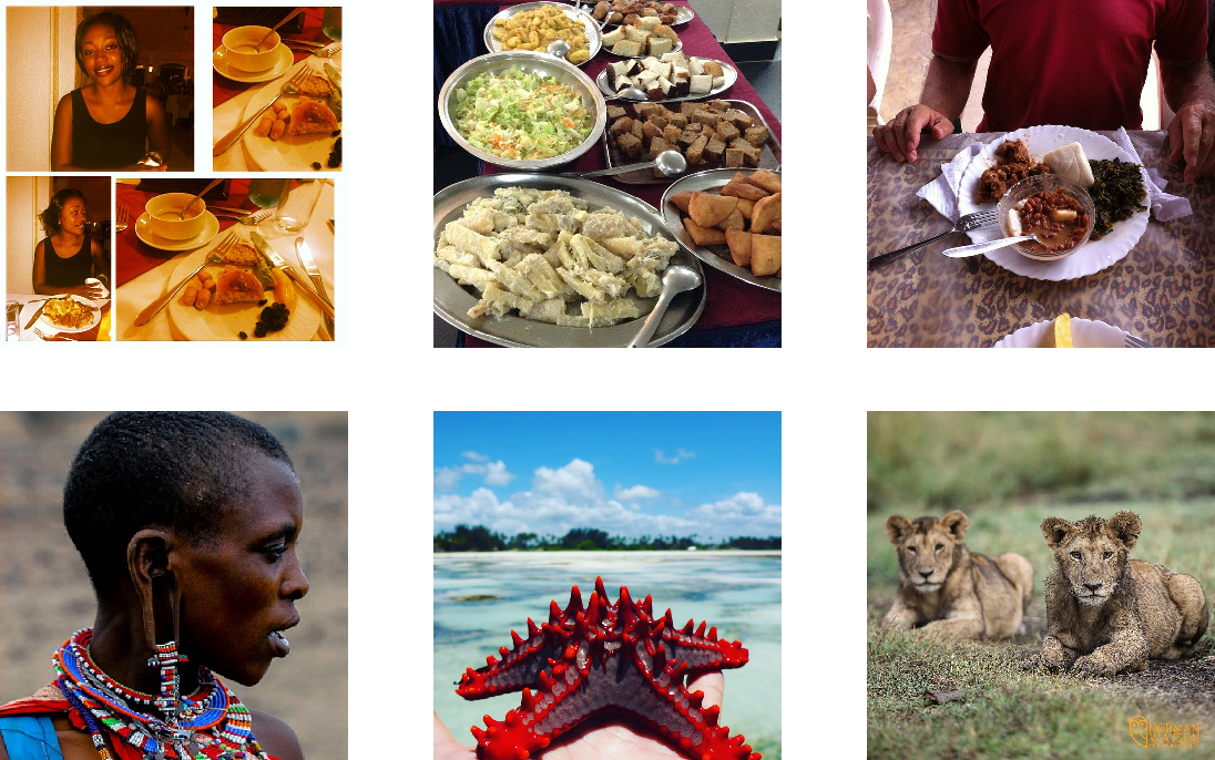 Figure 1 for Scraping Social Media Photos Posted in Kenya and Elsewhere to Detect and Analyze Food Types