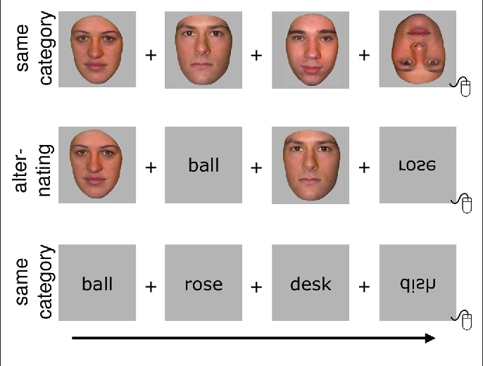 Lateralization facial expressions