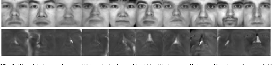 Figure 1 for Sparse Illumination Learning and Transfer for Single-Sample Face Recognition with Image Corruption and Misalignment