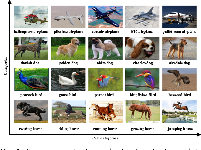 Figure 1 for Refining Image Categorization by Exploiting Web Images and General Corpus