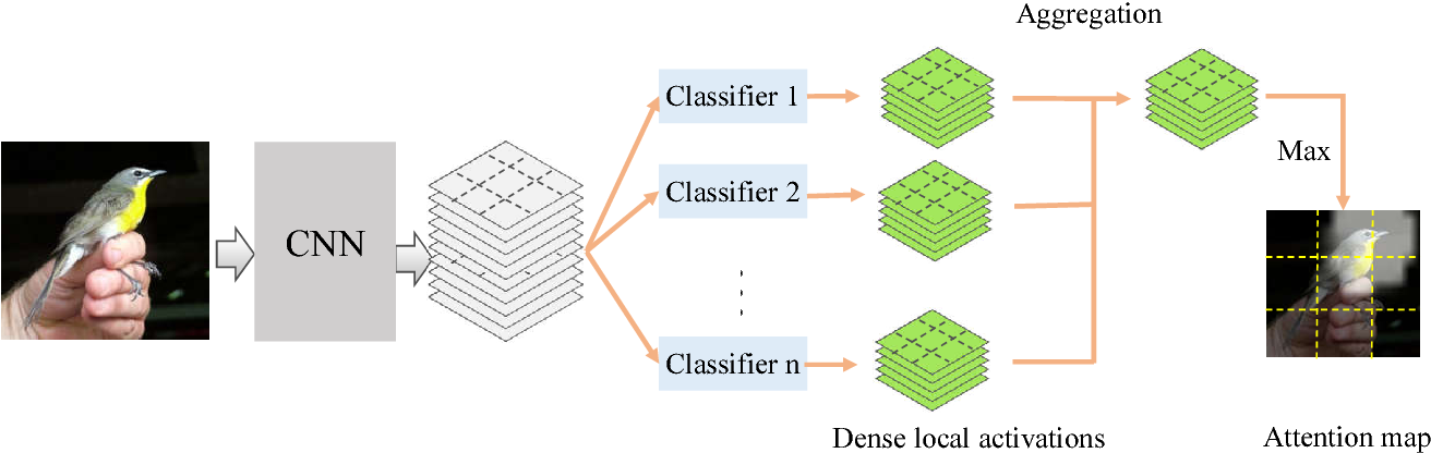 Figure 1 for Generating Attention from Classifier Activations for Fine-grained Recognition