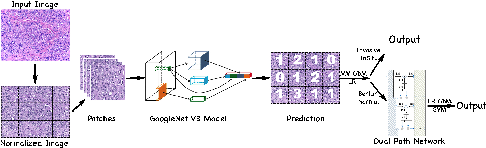 Figure 3 for Deep Learning Framework for Multi-class Breast Cancer Histology Image Classification