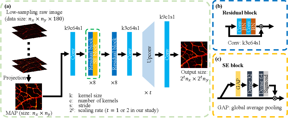 Figure 3 for Photoacoustic Microscopy with Sparse Data Enabled by Convolutional Neural Networks for Fast Imaging