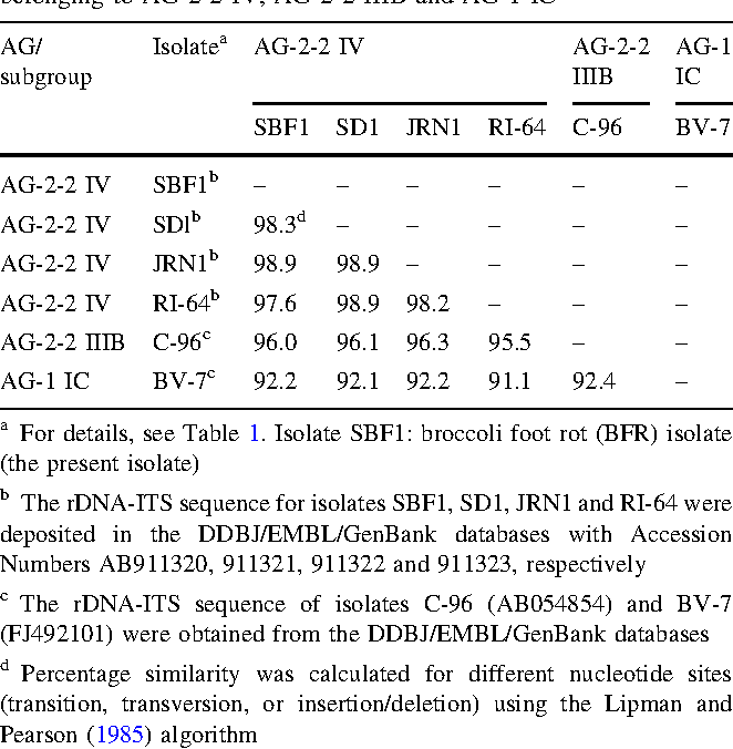 Table 2 Sequence similarity of rDNA-ITS regions including 5.8S gene among the broccoli foot rot (BFR) isolate and reference isolates belonging to AG-2-2 IV, AG-2-2 IIIB and AG-1 IC